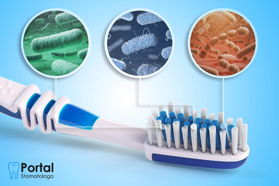 Bakterie w jamie ustnej